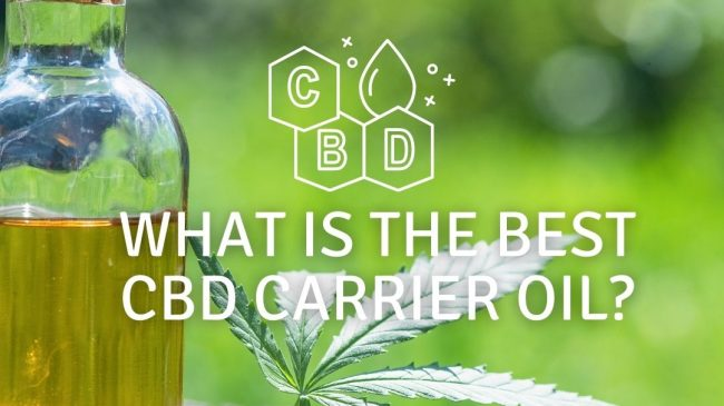 What is the Best CBD Carrier Oil – Carrier Oils Explained?