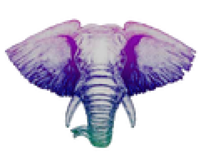 Exotic Elephant Pure Relief Review