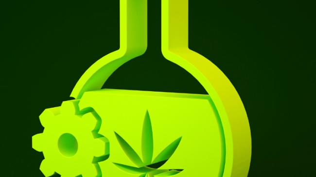 How Long Does Weed Stay In Your Body?