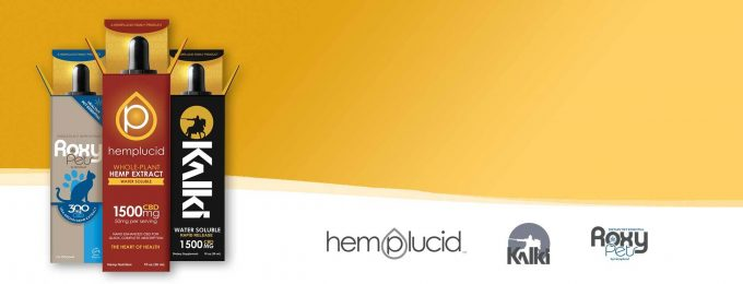 HempLucid Authorized Distributor